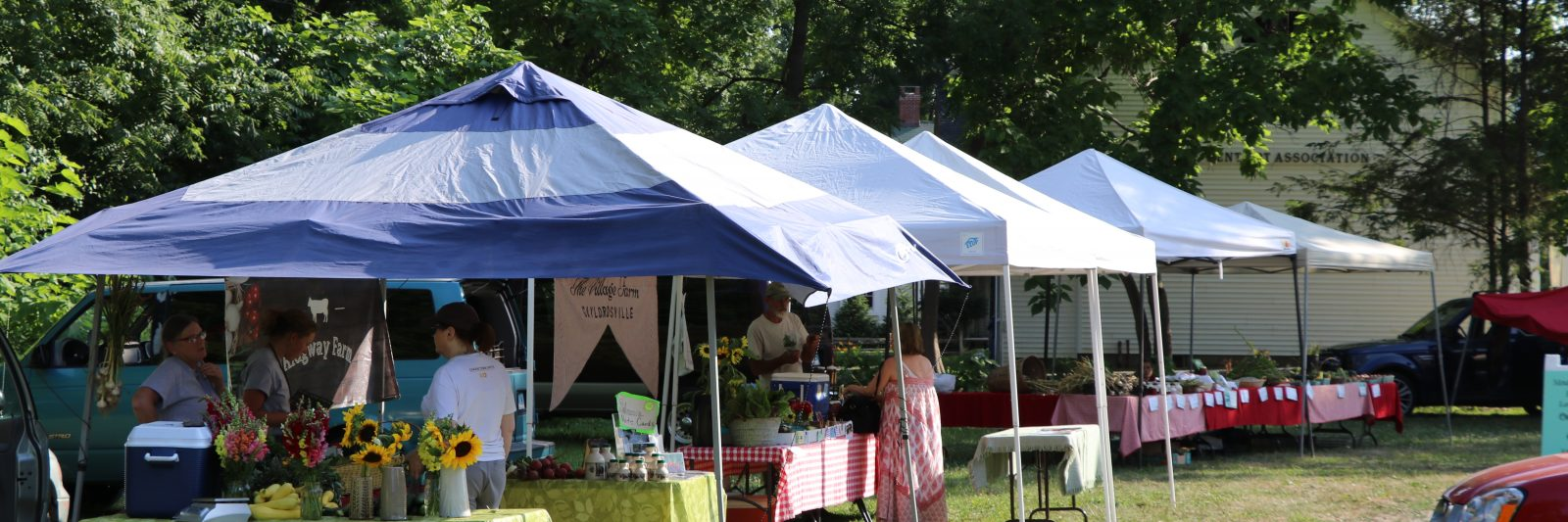 farmer's market tents
